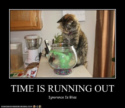 TIME IS RUNNING OUT Ignorance Is Bliss