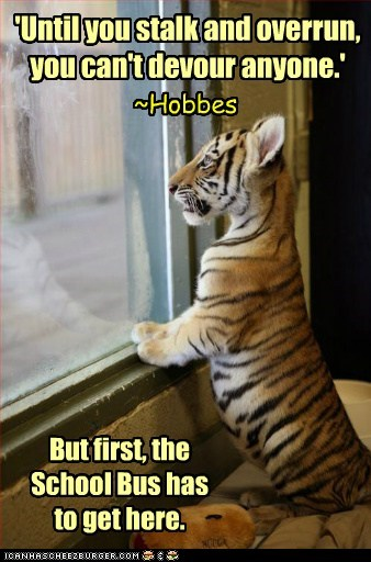 best of the week,calvin and hobbes,Hall of Fame,home,pounce,quote,school bus,tiger cub