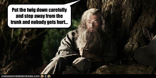 ents gandalf ian mckellan Lord of The Ring Lord of the Rings mistake son tree