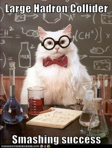 chemistry cat hadron collider Memes science - 6427076864