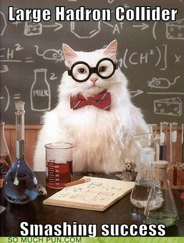 cern,chemistry cat,double meaning,higgs boson,LHC,literalism,physics,smashing
