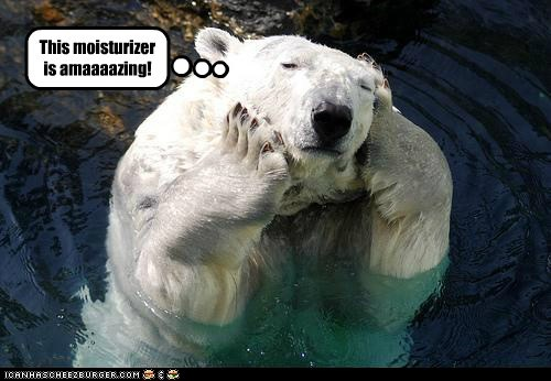 amazing,massaging,moisturiser,polar bear,rubbing,young