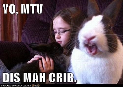 bunnies,camera,crib,mtv cribs,rabbits,reality show,talking