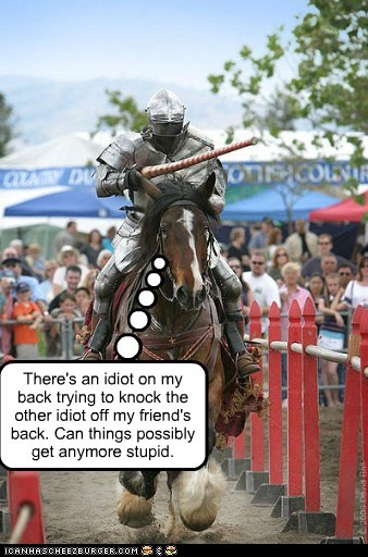 annoyed game horse idiot jousting knights stupid unimpressed