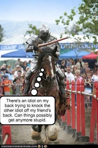 annoyed game horse idiot knights stupid unimpressed - 6428177664