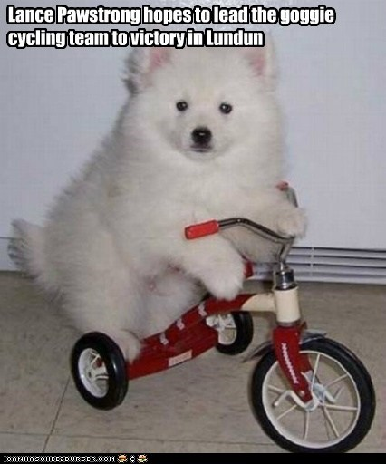 bicycle captions dogs dogs dressed up Lance Armstrong London 2012 olympic puppy - 6428187136