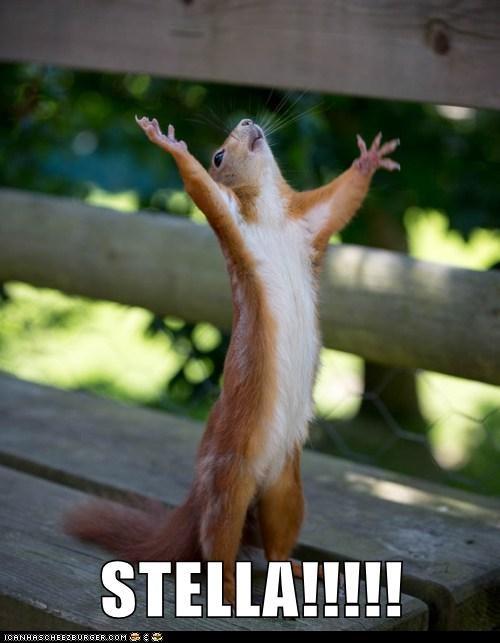 a streetcar named desire Marlon Brando squirrel stanley kowalski stella yelling - 6428424448