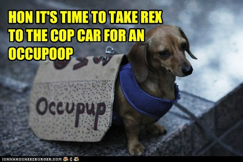 dogs,Occupy Wall Street,political pictures,protesters