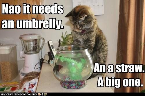 Nao it needs an umbrelly. An a straw. A big one.