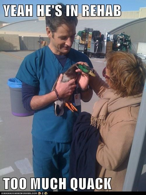 addiction captions crack doctor drugs ducks puns quack rehab veterinarian - 6429321216