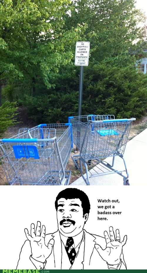 Badass,carts,rebels,shopping