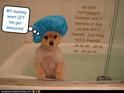 ya yooz hartzgoggie shampoo and it poysuns ur dog ...so yoo tell 2-fwends ...and they tell 2-fwends ...an so on ...an so on ...an so on ... MY mommy wont LET me get seezures!