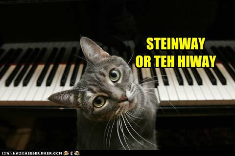 captions Cats highway listen Music my way piano steinway