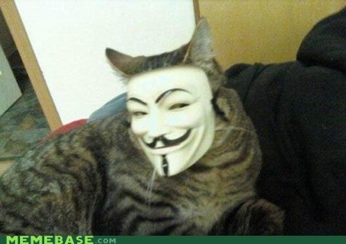 anonymous cat Guy Fawkes Memes - 6430442752
