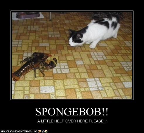 SPONGEBOB!! A LITTLE HELP OVER HERE PLEASE!!!