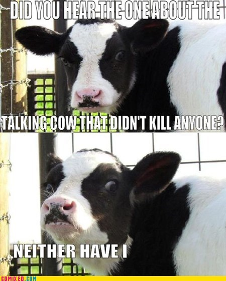 best of week,cow,dairy,joke,milk,murder,the internets