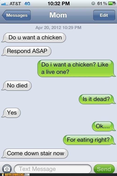 AutocoWrecks chicken dead eating g rated live animals respond ASAP - 6430985216