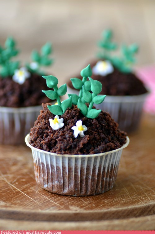 chocolate cupcakes epicute fondant garden plants potato soil - 6431009024