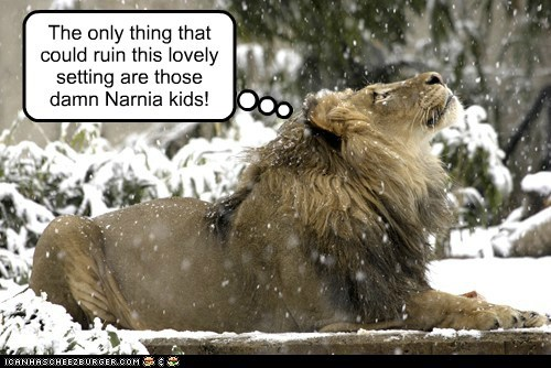 aslan happy kids lion narnia perfect ruin setting snowing