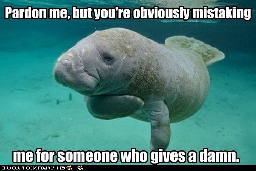 give a damn,manatee,mistake,pardon me,rude