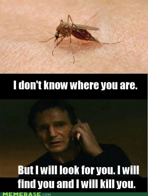 i will find you,liam neeson,Memes,mosquito