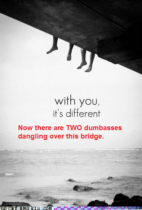 bridge,dumbass,hipster edit,hipsterlulz,stupidity