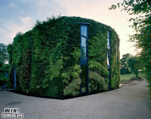 design garden home mother nature ftw wall