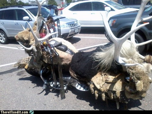 deer deer skin Hall of Fame hunting liberals motorcycle
