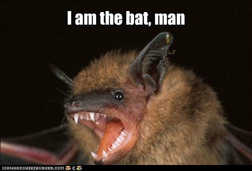 I am the bat, man