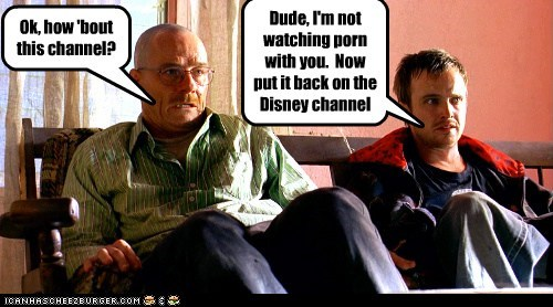 Ok, how 'bout this channel? Dude, I'm not watching porn with you. Now put it back on the Disney channel