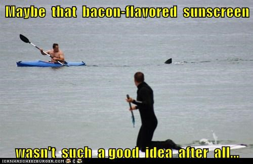 bacon,political pictures,sharks,sunscreen