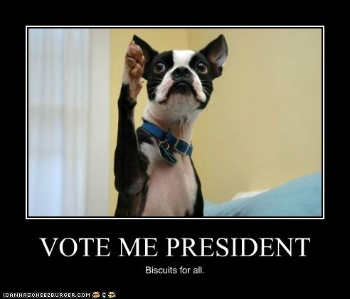 VOTE ME PRESIDENT Biscuits for all.