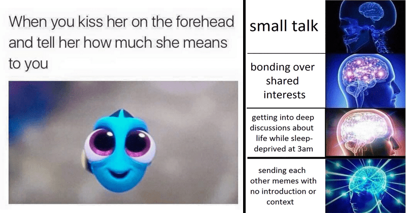 Relationship memes, dogs, cats, animals, spongebob | kiss her on forehead and tell her much she means earthdad: this is so wholesome Finding Nemo baby Dory | small talk bonding over shared interests getting into deep discussions about life while sleep- deprived at 3am sending each other memes with no introduction or context expanding galaxy brain