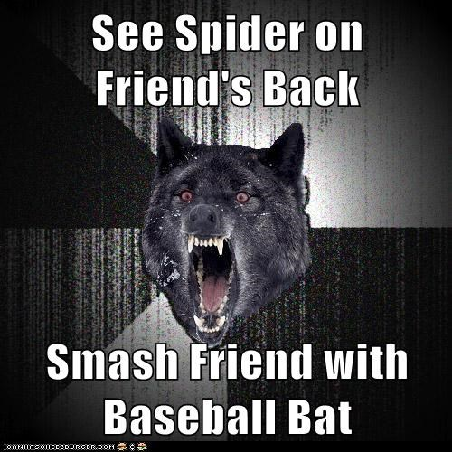 back baseball bat Hall of Fame Insanity Wolf Memes smash spider - 6434001408