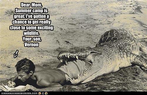 attack bite crocodile eat letter man - 6434257664