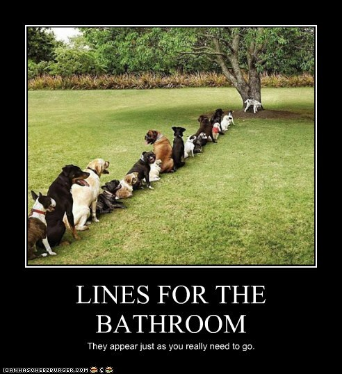 bathroom best of the week demotivational dogs Hall of Fame waiting in line