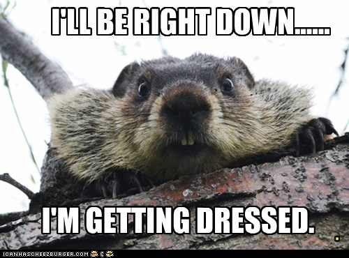 be right down,beaver,getting dressed,modesty,visitor