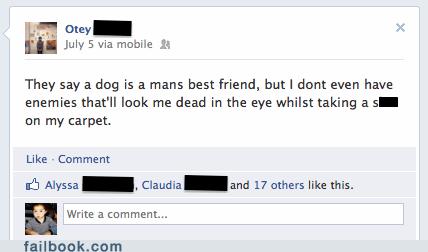 animals dogs friends poop pooping - 6434437120