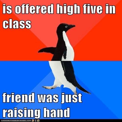 socially awkward socially awkward penguin