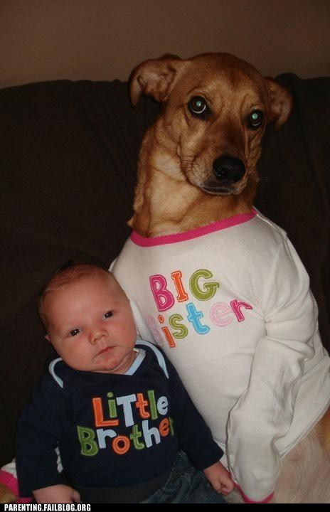 baby,big sister,dogs,little brother,shirts