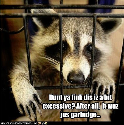bargaining,cage,excessive,garbage,jail,raccoon,Sad,stealing