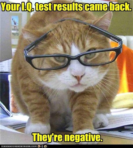 best of the week captions Cats genius idiot IQ low negative smart