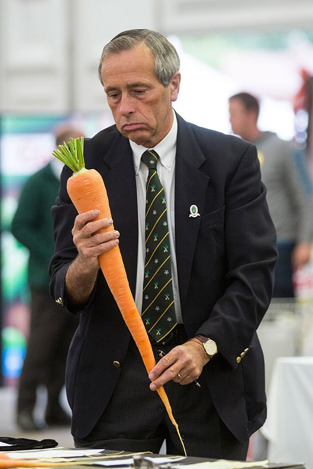 man and huge carrot photoshops