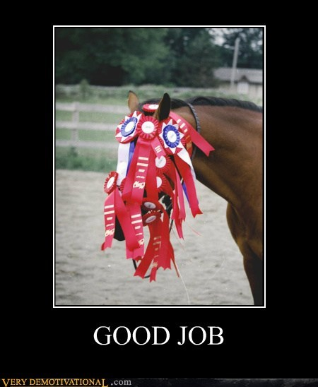 good job,horse,ribbons,Sad