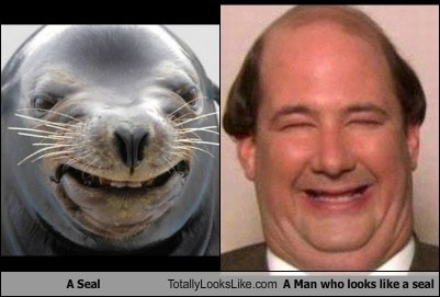 A Seal Totally Looks Like A Man who looks like a seal