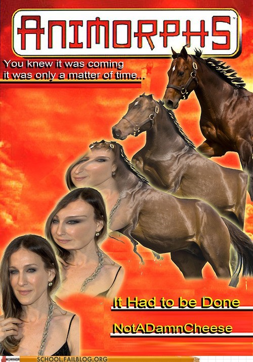 animorphs,bargain books,horse,sarah jessica parker