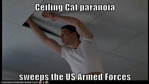 actor an officer and a gentlema an officer and a gentleman ceiling cat celeb funny meme Movie richard gere - 6436735744