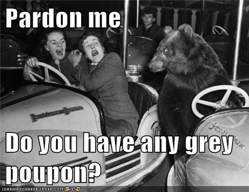 Pardon me Do you have any grey poupon?