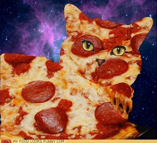 cat cheese pepperoni pizza space - 6437714944