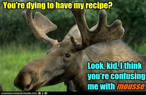 confused,misunderstanding,moose,mousse,pun,recipe